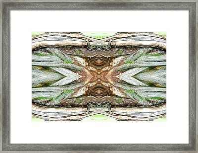 Unnatural 64 Framed Print by Giovanni Cafagna