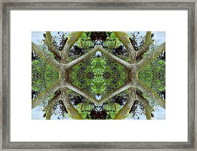 Unnatural 65.2 Framed Print
