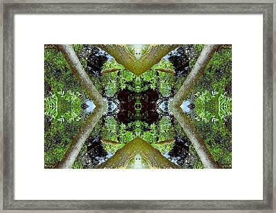 Unnatural 65.3 Framed Print