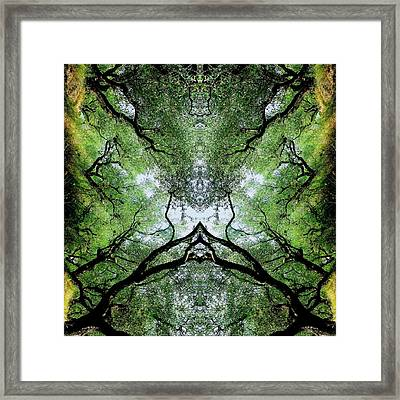 Unnatural 75 Framed Print