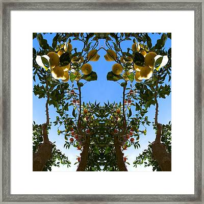 Unnatural 78 Framed Print