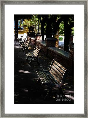 unoccupied park benches in the shade of trees in Palestrina Framed Print