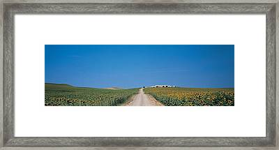 Unpaved Road Andalucia Spain Framed Print by Panoramic Images