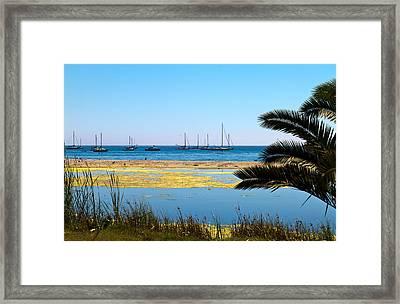 Unsafe Harbor Framed Print by Bernard  Barcos