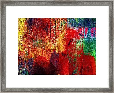 Untamed Colors  Framed Print