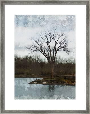 Until Spring Framed Print by Jack Zulli