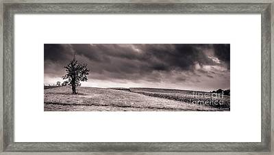 Untitled 510 Framed Print by Arne Hansen