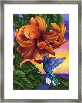 Orange Crush Framed Print by Carolyn Steele