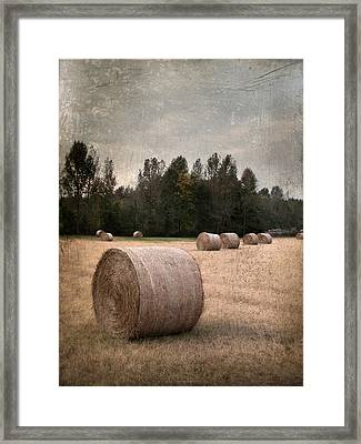 Untitled Hay Bale Framed Print by Robert Tolchin