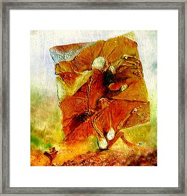 Untitled Framed Print by Henryk Gorecki