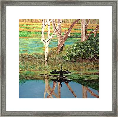 Florida Landscape Framed Print by Mark Baird