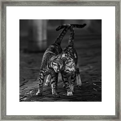 Untitled Framed Print by Nebula