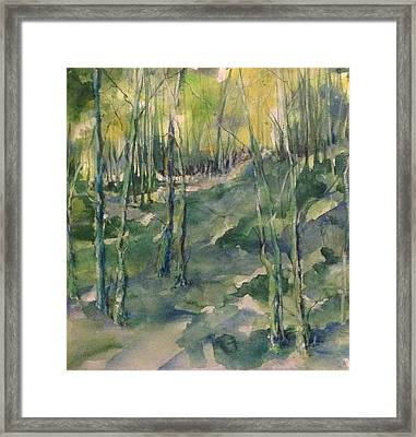 Untitled Swamp  Framed Print by Robin Miller-Bookhout