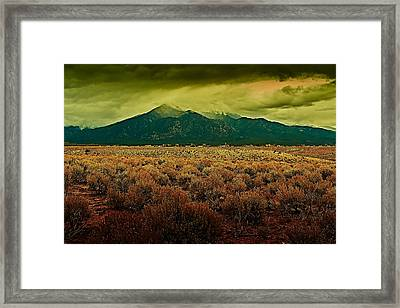 Untitled Xxv Framed Print
