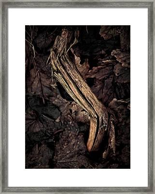 Untouchable Framed Print by Odd Jeppesen