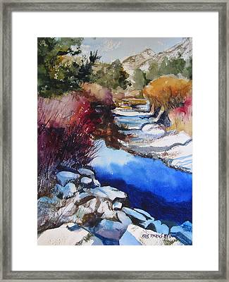 Up A Creek Framed Print
