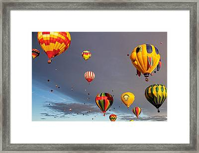 Framed Print featuring the photograph Up And Away by Dave Files