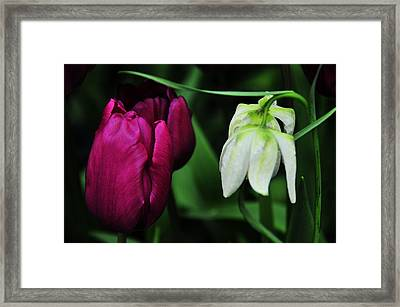 Up And Down Framed Print by Mike Martin