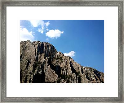 Framed Print featuring the photograph Up In The Sky by Lucy D