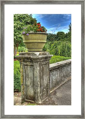Up On A Pedestal  Framed Print by Honour Hall