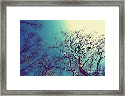 Up Framed Print by Patrick Rodio