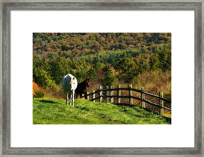 Framed Print featuring the photograph Up The Hill by Joan Davis