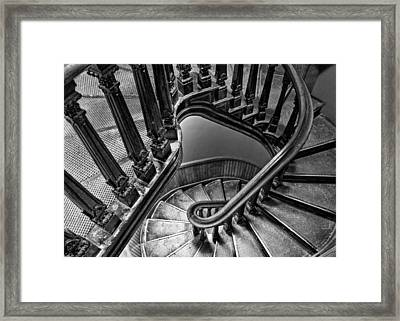 Up The Side - Bw Framed Print by Nikolyn McDonald