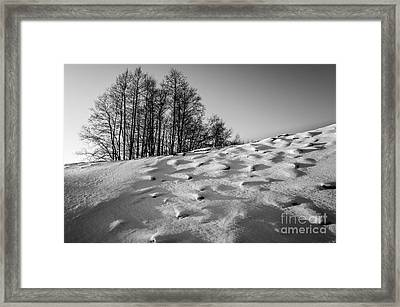Up To The Hill Bw Framed Print