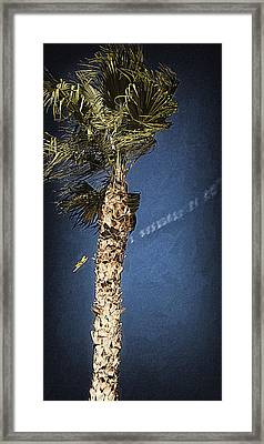 Up We Go Into The Wild Blue Yonder Framed Print by Ron Regalado