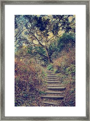 Up We Go Framed Print by Laurie Search