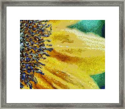 Upclose Framed Print