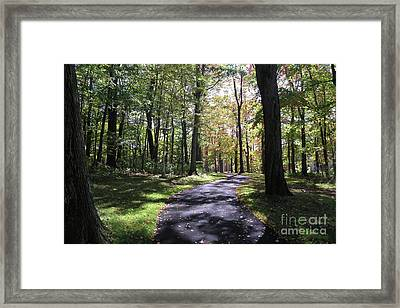 Upj Campus Path Framed Print