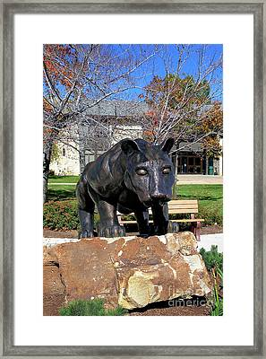 Upj Panther Framed Print