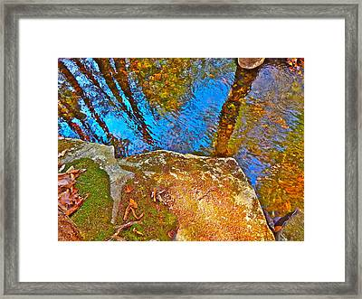 Upland Trail 2014 106 Framed Print
