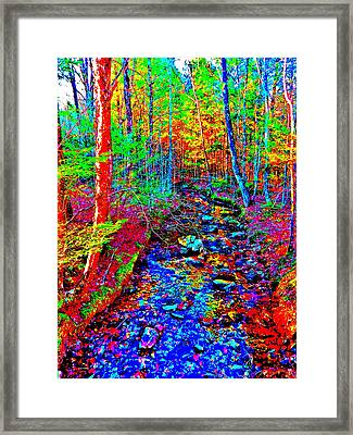 Upland Trail 2014 221 Framed Print