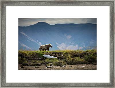 Upon The Bluff Framed Print by Chase Dekker Wild-life Images
