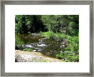 Upper Bidwell Beauty Framed Print by Mike Dallo
