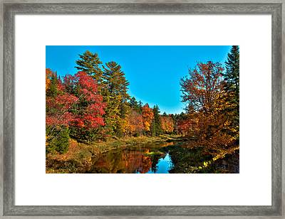 Upper Branch Of The Moose River In Autumn Framed Print by David Patterson