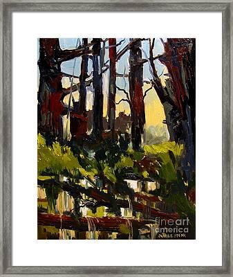Upper Cataract Falls Framed Print