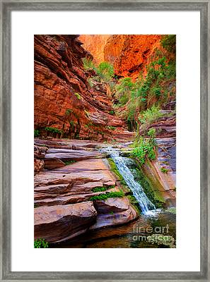 Upper Elves Chasm Cascade Framed Print by Inge Johnsson