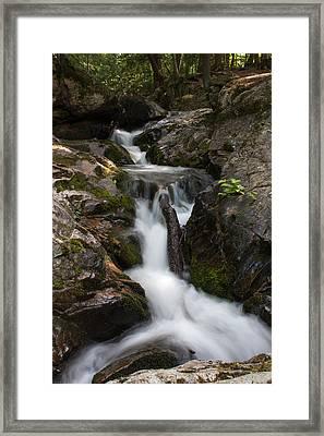 Upper Pup Creek Falls Framed Print