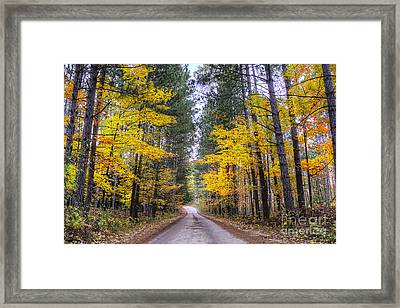 Upper River Road In Fall Framed Print by Twenty Two North Photography