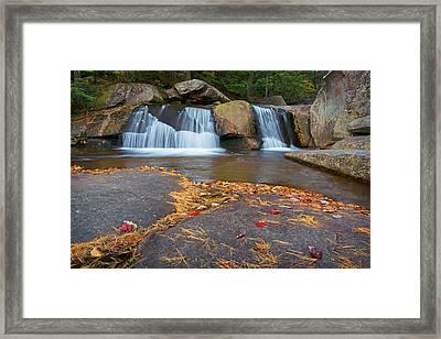 Upper Screwauger Falls Framed Print by Darylann Leonard Photography