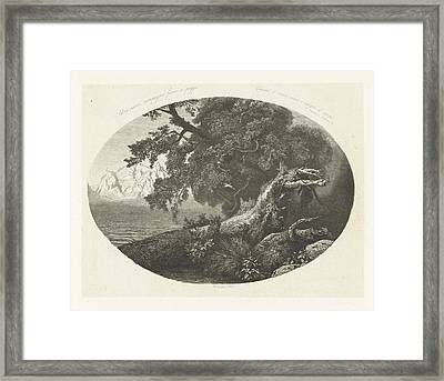 Uprooted Tree Trunk On The Coast, Pierre Louis Dubourcq Framed Print
