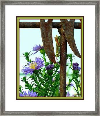 Framed Print featuring the photograph Upside Down by Heidi Manly