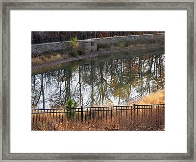 Framed Print featuring the photograph Upside Down by Pete Trenholm