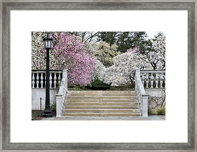 Upstairs One Framed Print