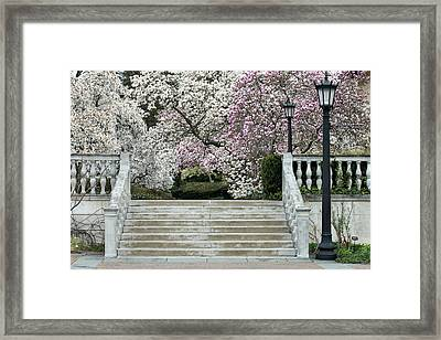 Upstairs Two Framed Print