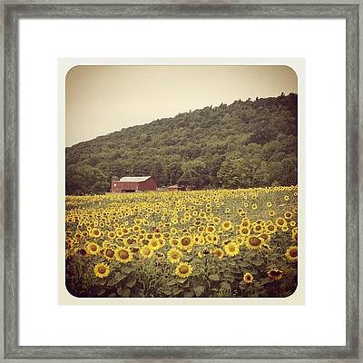 Upstate Framed Print