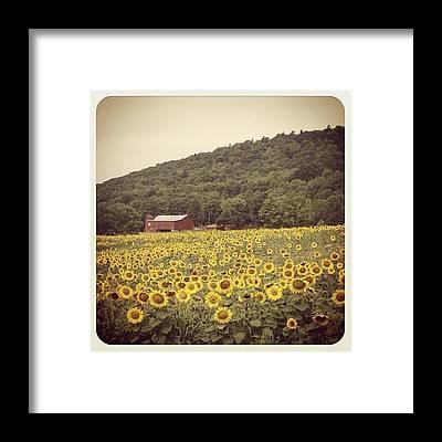 Mountain Framed Prints
